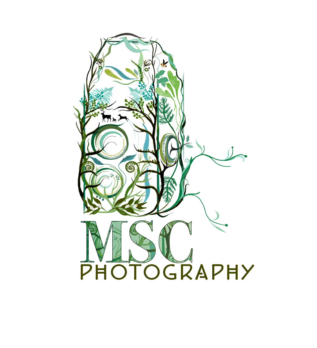 MSC Photography